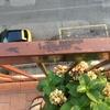 Verniciatura ringhiera balcone