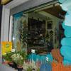 Sostituzione vetrina negozio