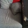Cambio pelle divano finta pelle - vicofertile (pr)