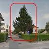 Abbattimento pino 12 metri