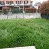 Realizzazione muretto contenimento giardino