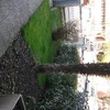 Giardiniere manutenzione giardino