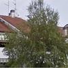 Preventivo ristrutturazione terrazzi del condominio a torreglia (pd)