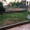 Sistemare un piccolo giardino di circa 20 mq