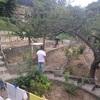 Rifacimento giardino di 1800mq