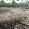 Sistemazione giardino castel d'azzano