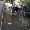Fornitura e posa di prato a rotoli per piccolo giardino