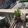 Ringhierina anticaduta vasi su davanzale balconi