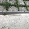 Rifacimento pavimento esterni