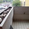 Manutenzione Giardino