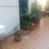 Manutenzione e cambio irrigazione giardino