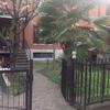 Progetto piccolo giardino e area  bbq