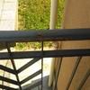 Carteggiare e verniciare ringhiera del balcone
