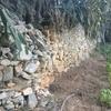Riparazione muro terrazzamento