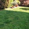 Rifacimento giardino in erba sintetica a cogliate, mb