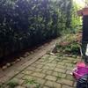 Ricoprire Giardino con Pergole e Piastrelle