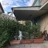 Smantellamento tettoia esistente e adeguamento grondaie