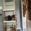 Installare Box Doccia