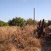 Pulizia terreno agricolo