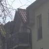 Installare zanzariera o altro simile per evitare che il gatto cada dal balcone