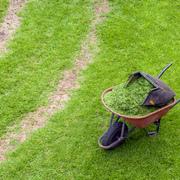 jardineros_139665
