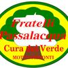 Luigi Passalacqua